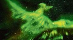 #HeyUnik  Burung Phoneix Nampak Lagi di Langit dan Bikin Heboh #Antariksa #Hewan #Misteri #YangUnikEmangAsyik