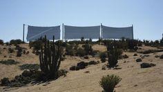 Temas de interés @Aguamarket: Atrapanieblas, un recurso para extraer el agua en el desierto