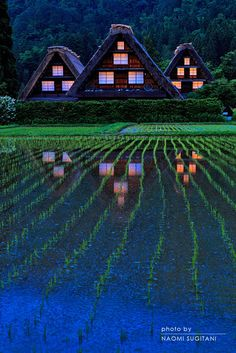Shirakawa, Gifu, Japan. Photograph by Naomi Sugitani