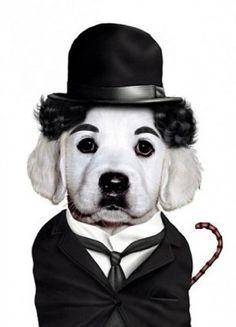 charlie chaplin-perro