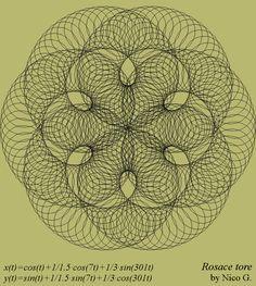 Rosace tore parametric curve: x(t)=cos(t)+1/1.5*cos(7*t)+1/3*sin(301*t), y(t)=sin(t)+1/1.5*sin(7*t)+1/3*cos(301*t), t∈[0; 2π], by Nico. G