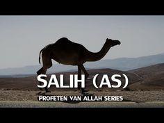 Profeten van Allah Series: Salih (AS) | HD - YouTube