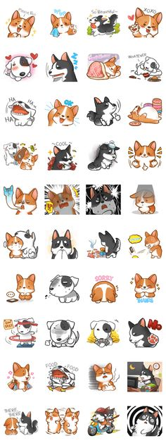 Corgi 'the boss' and his gang has join 'LINE' Go go! Let us add more fun to your chat. >w<bb Cute Animal Drawings, Kawaii Drawings, Cute Drawings, Kawaii Stickers, Cute Stickers, Kawaii Illustration, Kawaii Chibi, Dog Crafts, Cute Doodles