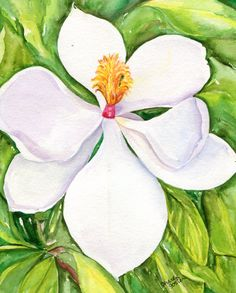 watercolor painting Magnolia from Mississippi, Original 8 x 10 by SharonFosterArt on Etsy