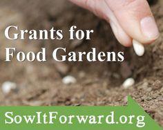 The Sow It Forward Garden Grants Program | Kitchen Gardeners International. Application deadline: http://kgi.org/grants