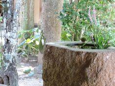 ハッシュタグ #pupuru