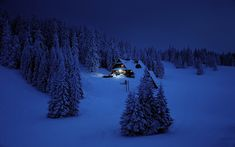 Snowy Forest Cabin At Night - Wood Print Forest Cabin, Snowy Forest, Carpe Diem, Framed Prints, Canvas Prints, Art Prints, Lago Moraine, Location Chalet, Winter Survival