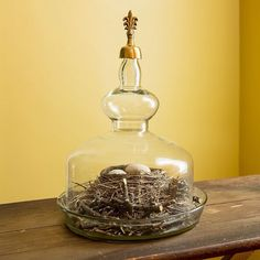 Amazon.com: Achla Designs Retro Bell Jar Terrarium, Lucie: Patio, Lawn & Garden
