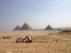With #EgyptDayTours you will have a chance to complete the sightseeing tours as well. For more details click here @ http://www.egyptonlinetours.com
