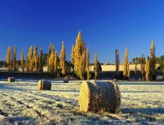 Autumn on a farm near Fouriesburg Orange Free State, South Africa The Beautiful Country, Beautiful Places, Amazing Places, South Africa Tours, Namibia, Free State, Out Of Africa, My Land, Countries Of The World