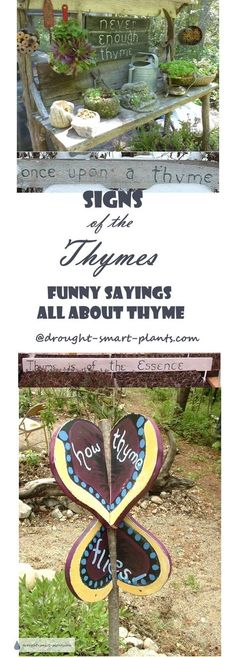 Signs of the Thymes - funny garden sign sayings all about Thyme... Gardening | Rustic Garden Art | Garden Sign Sayings