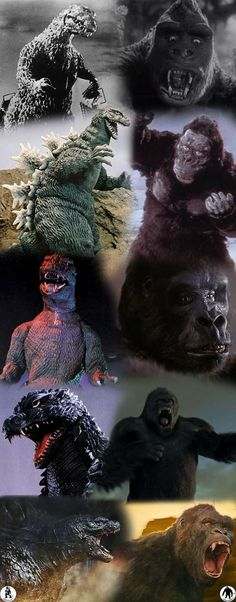 swampthingy: Godzilla and King Kong time line — Blue Ruins Cult Movies, Sci Fi Movies, Horror Movies, Cartoon Meme, King Kong Vs Godzilla, Aliens, Japanese Monster, Arte Dc Comics, Jurassic Park World