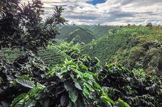 El espectacular paisaje cultural cafetero del Eje Cafetero de Colombia