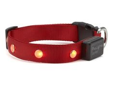 Pet Lights Dog Collar - BeauJax Boutique Pet Lights Dog Collar will keep your dog safe on your nightly walks or when light is scarce or at public events where it's dusk and a lot of people are around. Teach Dog Tricks, Cute Dog Collars, Christmas Gifts 2016, Dog Hacks, Dog Training Tips, Dog Gifts, Red Plaid, Dog Care, Dusk