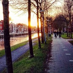 Lovely sunset in Utrecht  #utrecht #netherlands #dutch #city #town #canal #trees #path #sunset #sun #pretty #beautiful #red #orange #photooftheday #instagood #gorgeous #warm #view #evening #instasky #all_sunsets