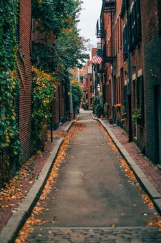 Acorn STreet in Boston in the fall You are in the right place about street art background Here we offer you the most beautiful pictures about the street art urban you are looking for. When you examine the Acorn STreet in Boston in the fall part of … Boston In The Fall, In Boston, Boston Art, City Aesthetic, Travel Aesthetic, Adventure Aesthetic, Autumn Aesthetic, Boston Weekend, Nature Photography