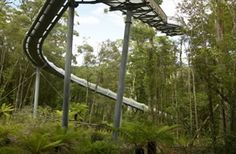 With a name like Dismal Swamp, you may not know what to expect. Read the article to find out more. http://www.discovertasmania.com.au/about/articles/dismal-swamp  #dismalswamp #tasmania #discovertasmania