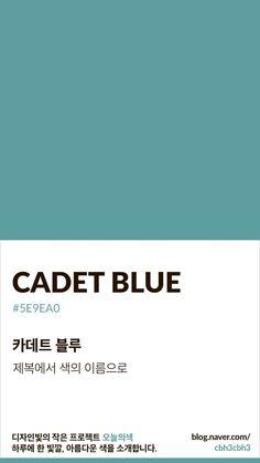 Flat Color Palette, Colour Pallete, Color Schemes, Pantone Colour Palettes, Pantone Color, Pantone Blue, Colour Dictionary, Aesthetic Colors, Colour Board