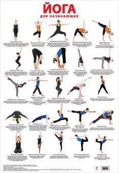 What are the benefits of yoga? How does the daily discipline of yoga affect the body, mind and spirit? What is the History of Yoga? Yoga is a holistic health and wellness activity that both relaxes… Yoga Chart, Yoga Poses Chart, Basic Yoga Poses, Yoga Poses For Beginners, Yoga Balance Poses, Yoga Régénérateur, Sup Yoga, Yoga Meditation, Yoga Asanas Names