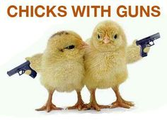 The Well Armed Woman Blog: The Phenomenon of Women Purchasing Firearms is Much More...