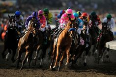 Nyquist, with Mario Gutierrez aboard, wins the Sentient Jet Breeders' Cup Juvenile. Racing Baby, Horse Racing, My Old Kentucky Home, Kentucky Derby, Santa Anita Park, Run For The Roses, Sport Of Kings, Racehorse, Sea Birds