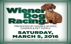Wiener Dog Racing Will Return to the Fair Grounds Race Course He Day, Pet Supplies, Champion, Fair Grounds, March, Racing, How To Get, Dogs, Running