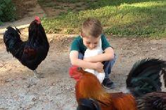 Takiej sytuacji chyba się nikt nie spodziewał 🙂 Chłopiec prosi kurę o…