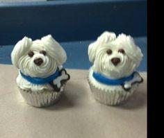 Bichon Frise Cup cakes. Cute as.