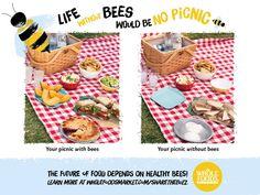 Whole Foods, una catena di supermercati bio in America ha lanciato una campagna. (http://www.wholefoodsmarket.com/sharethebuzz), i commessi di un negozio del Massachusetts hanno rimosso dagli scaffali tutti quei prodotti che non ci sarebbero più se sparissero le api e gli altri insetti impollinatori.