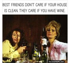 Best Friends Dont Care If your House Is Clean They Care If You Have Wine