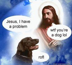 Image result for Jesus' Kingdom images Dogd