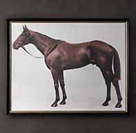Restoration Hardware's 1928 Royal Ascot Thoroughbred Print:Our portrait of a champion was taken in 1928 at England's Royal Ascot, the world's most prestigious horserace. Reprinted and carefully aged, the image depicts Aditoc, a magnificent thoroughbred owned by Lord Denver.