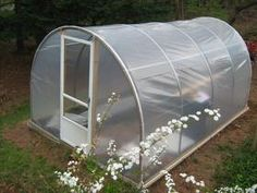 """Check out our internet site for even more relevant information on """"greenhouse plans homemade"""". It is actually an outstanding spot to read more. Large Greenhouse, Build A Greenhouse, Greenhouse Growing, Greenhouse Construction, Plant Watering System, White Clematis, Rainwater Harvesting, Diy Garden, Plant Needs"""