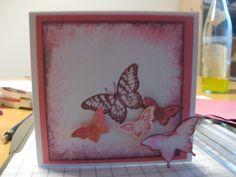 Stampin up Schmetterlinge