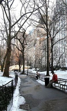 Central Park in winter, New York (by monkeymud on Flickr)