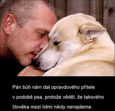 Nature Animals, Animals And Pets, Funny Animals, Dog Quotes Love, Man And Dog, I Love Dogs, Chihuahua, Favorite Quotes, Labrador Retriever