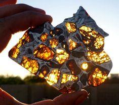 Tranche de météorite pallasite