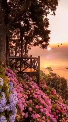 Beautiful Landscape Wallpaper, Scenery Wallpaper, Beautiful Landscapes, Beautiful Gardens, Beautiful Photos Of Nature, Amazing Nature, Beautiful Images, Beautiful Sky, Beautiful Scenery