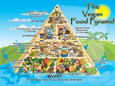 Vegan Diet Food Pyramid - High-Carb Low-Fat Low-Protein