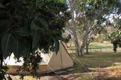 Day one or One day, you decide! We do the hard work and set the scene while you sit back, relax and enjoy your glamping experience. Sit Back, Hard Work, Glamping, Hammock, Outdoor Gear, Wild Flowers, Tent, Relax, Outdoor Furniture