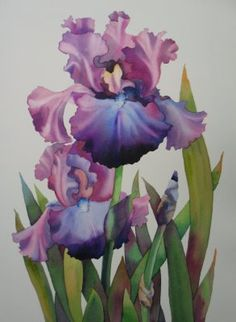 The iris was my grandma's favorite flower...maybe I could get something like this to remember her by