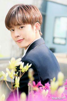 Baby Cubes, Yoo Seonho, Korean Actors, Idol, Guys, Produce 101, Sunshine, Wallpapers, Spring