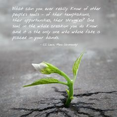 """""""What can you ever really know of other people's souls – of their temptations, their opportunities, their struggles? One soul in the whole creation you do know: and it is the only one who whose fate is placed in your hands."""" - C. S. Lewis, """"Mere Christianity"""""""