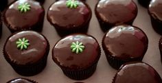 Chocolate Ganache Cupcakes from Georgetown Cupcakes
