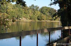 Monflanquin, autour du lac du Coulon en automne