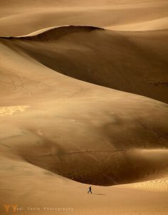 Walked the sand dunes in Great Sand Dunes National Park, Colorado | Flickr - Photo Sharing!