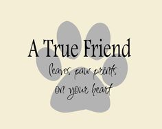 A True Friend. Dog Quote on Paw Print Vinyl Wall Decal, Dog Bumper Sticker, Dog Wall Decal Dog Lovers Galore Fox Terriers, Yorkies, Chihuahuas, Schnauzers, Beagles, Pitbulls, I Love Dogs, Puppy Love, True Friends