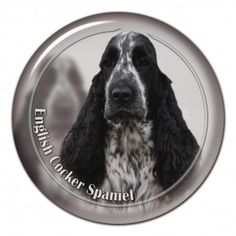 English cocker spaniel 3D sticker -englishcockerspaniel #cockerspaniel #cocker