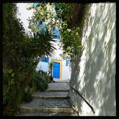 A Touch of Turquoise: africa street travel heritage tunisia turquoise sidibousaid dream culture atmosphere naturallight streetlife timeless quietness