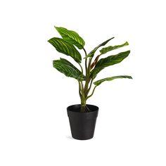 Kunstpflanze Bonsai im Topf, D:24cm x H:35cm, grün - DEPOT Bonsai, Cactus Plants, Products, Balcony, Cacti, Cactus, Gadget, String Garden